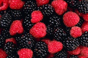berries (Copy)