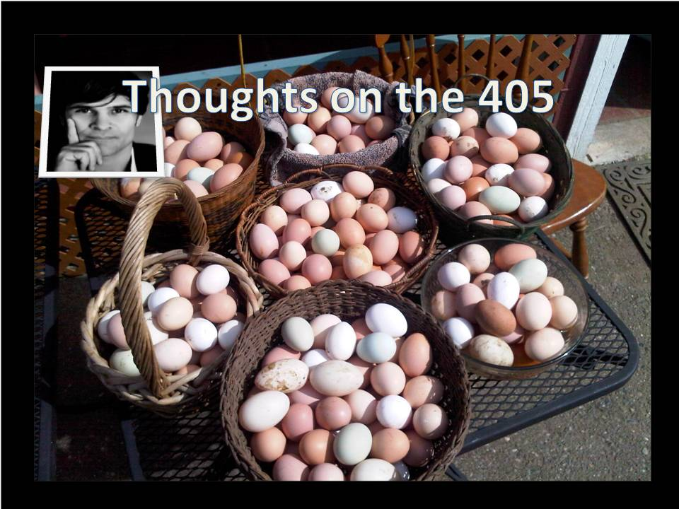 Putting Your Eggs In Many Baskets
