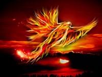 Dharma Karma Rising Phoenix
